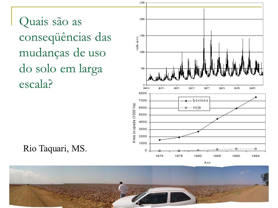 Quais são as conseqüências das mudanças de uso do solo em larga escala