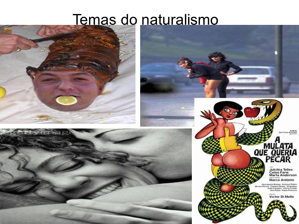 Temas do naturalismo