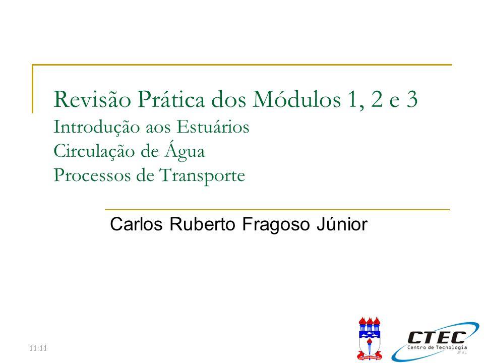 Carlos Ruberto Fragoso Júnior