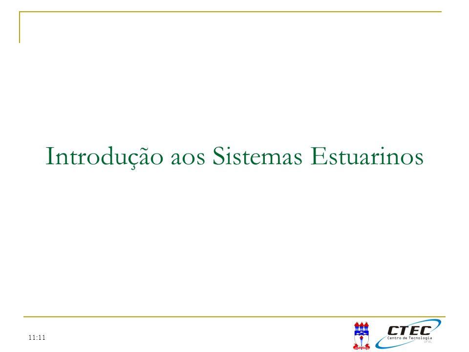 Introdução aos Sistemas Estuarinos