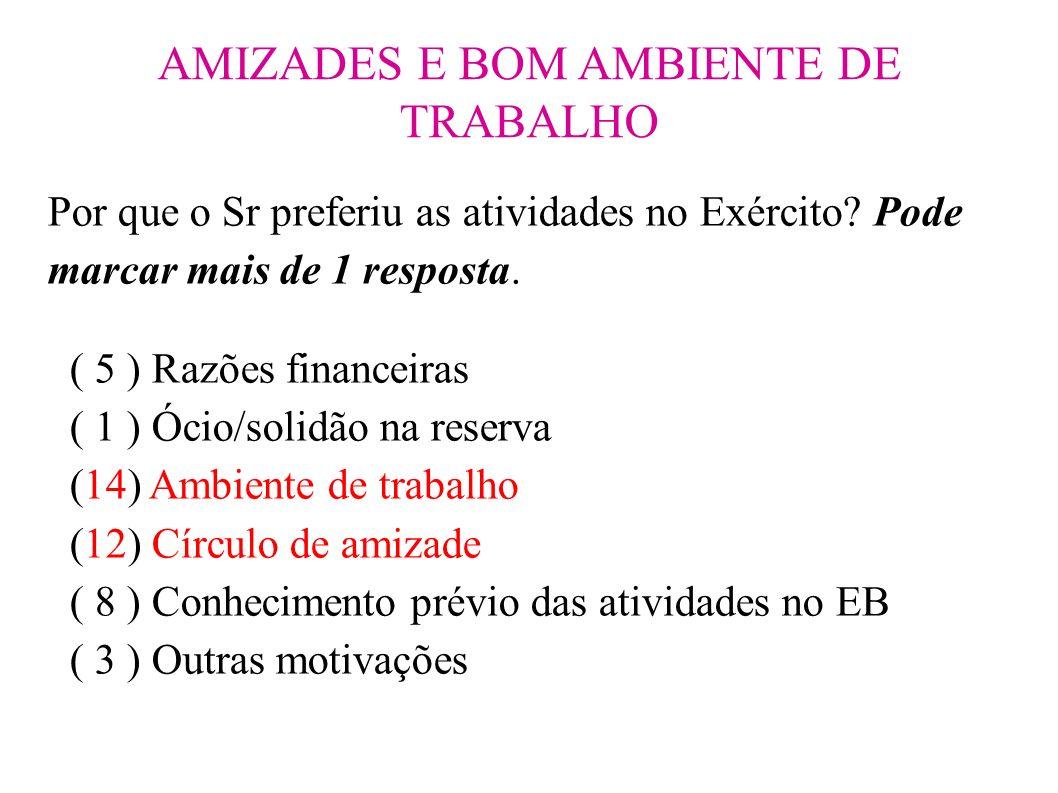 AMIZADES E BOM AMBIENTE DE TRABALHO