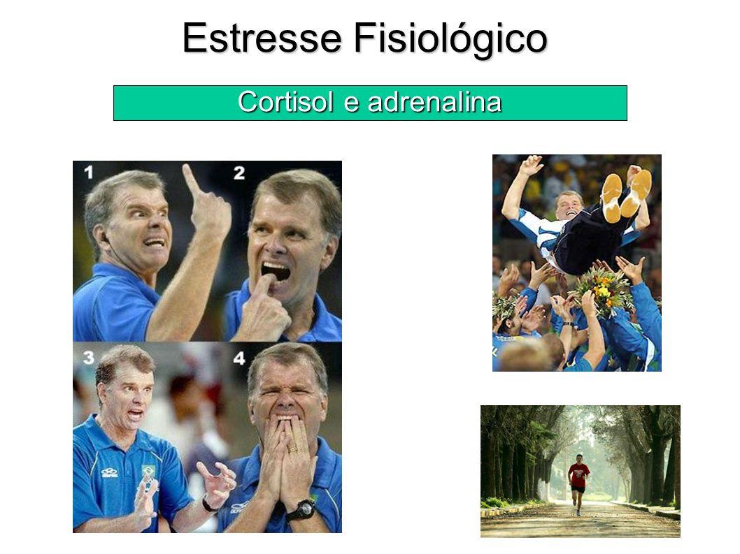 Estresse Fisiológico Cortisol e adrenalina