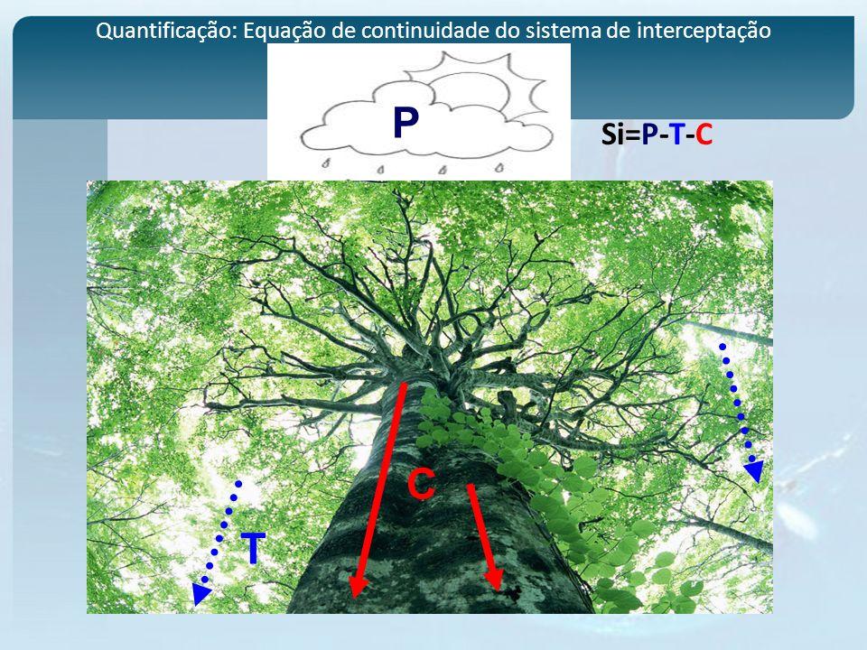 Quantificação: Equação de continuidade do sistema de interceptação