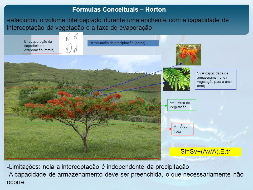 Fórmulas Conceituais – Horton