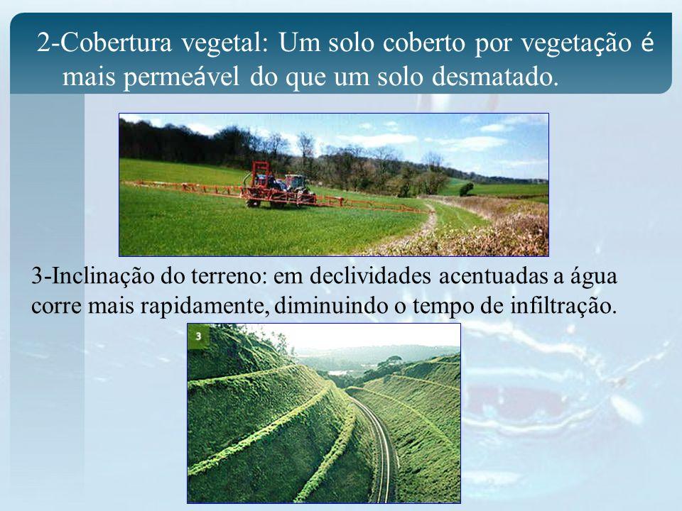 2-Cobertura vegetal: Um solo coberto por vegetação é mais permeável do que um solo desmatado.