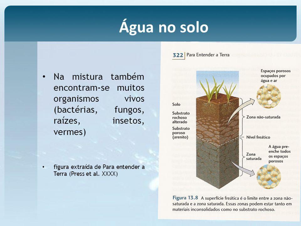Água no solo Na mistura também encontram-se muitos organismos vivos (bactérias, fungos, raízes, insetos, vermes)