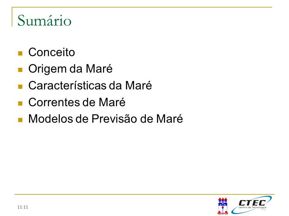 Sumário Conceito Origem da Maré Características da Maré