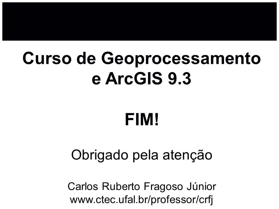 Curso de Geoprocessamento e ArcGIS 9. 3 FIM