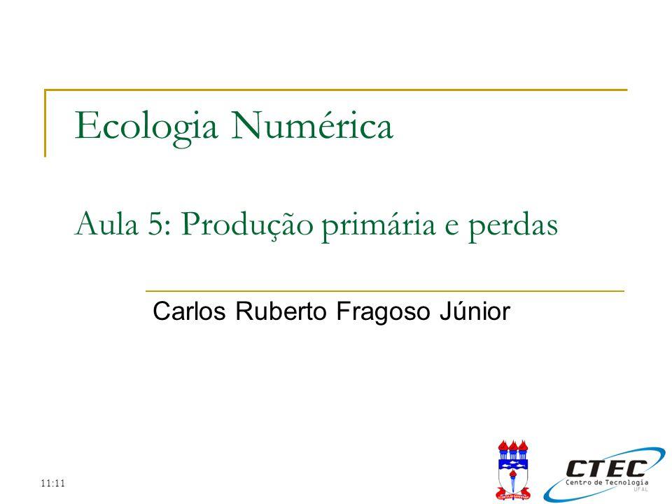 Ecologia Numérica Aula 5: Produção primária e perdas