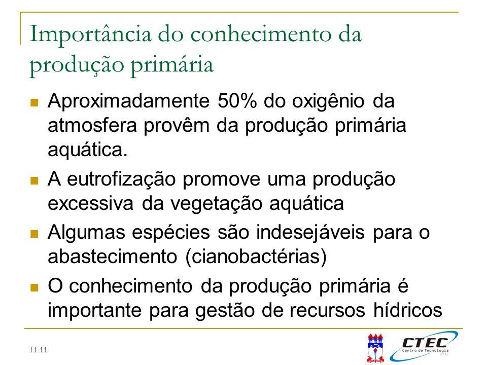 Importância do conhecimento da produção primária