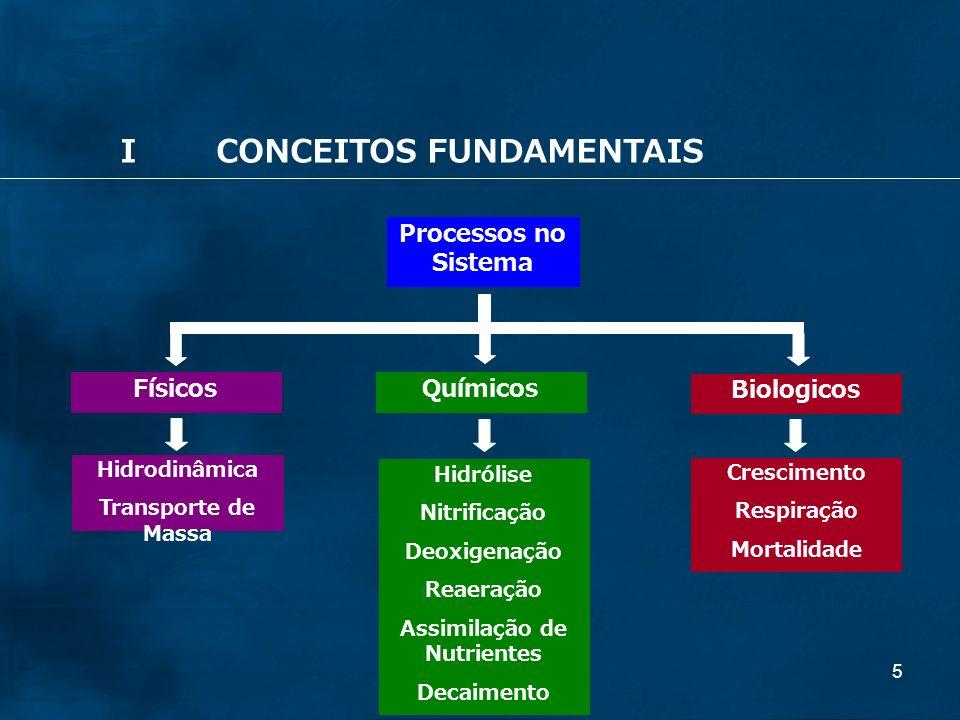 Assimilação de Nutrientes