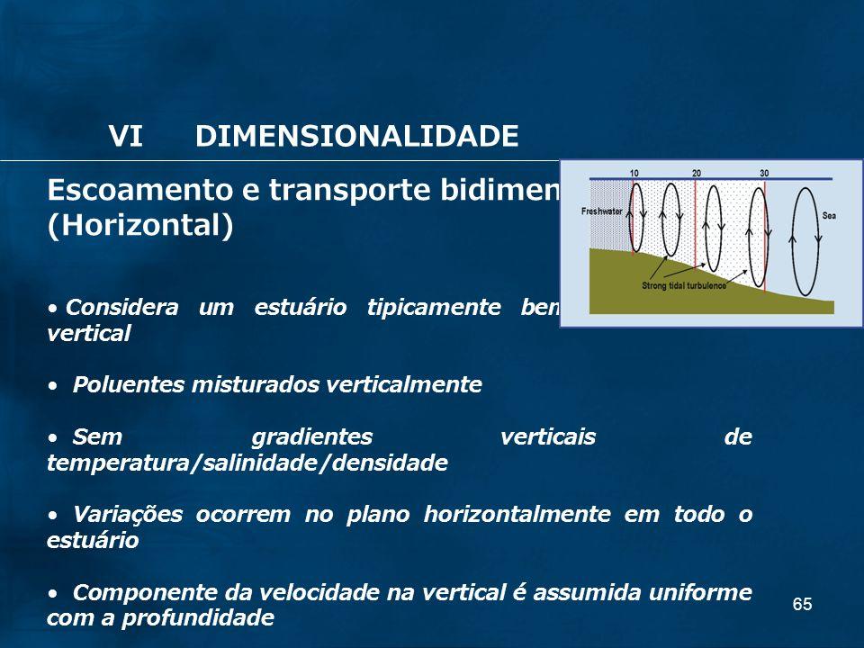 Escoamento e transporte bidimensional: (Horizontal)