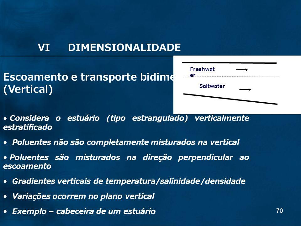 Escoamento e transporte bidimensional: (Vertical)