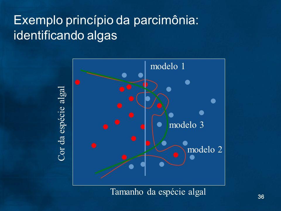 Exemplo princípio da parcimônia: identificando algas
