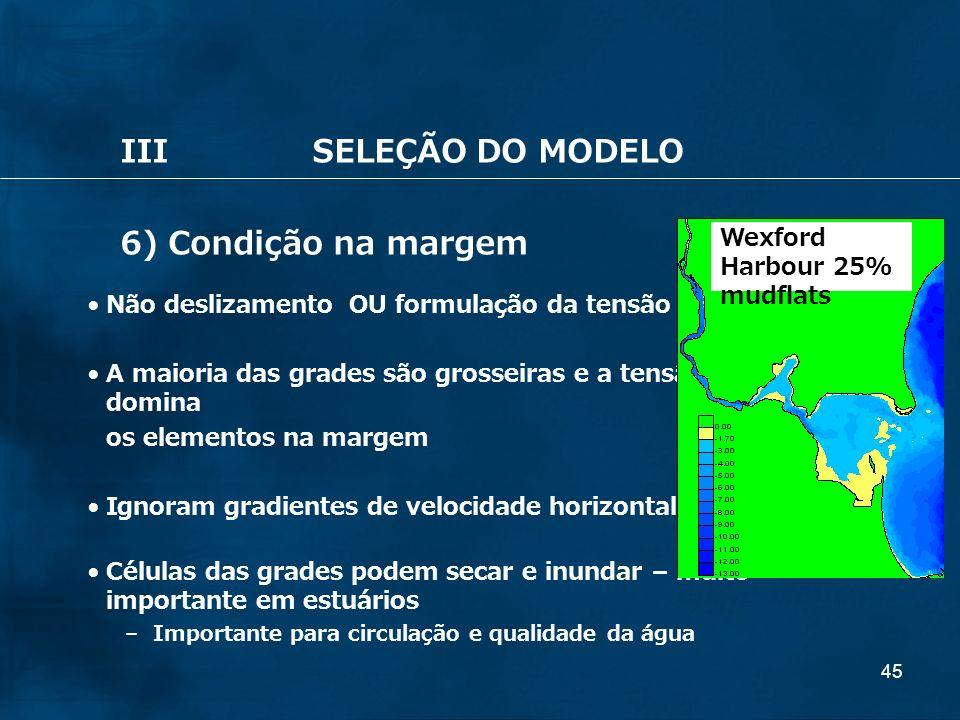 III SELEÇÃO DO MODELO 6) Condição na margem