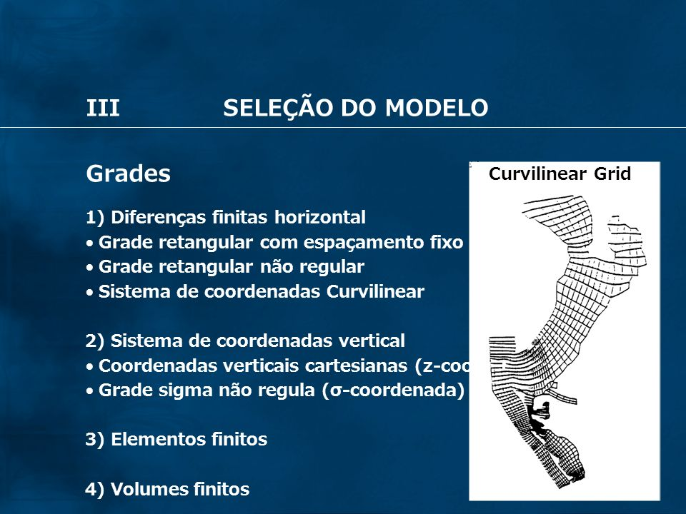 III SELEÇÃO DO MODELO Grades Curvilinear Grid Fixed-space Grid