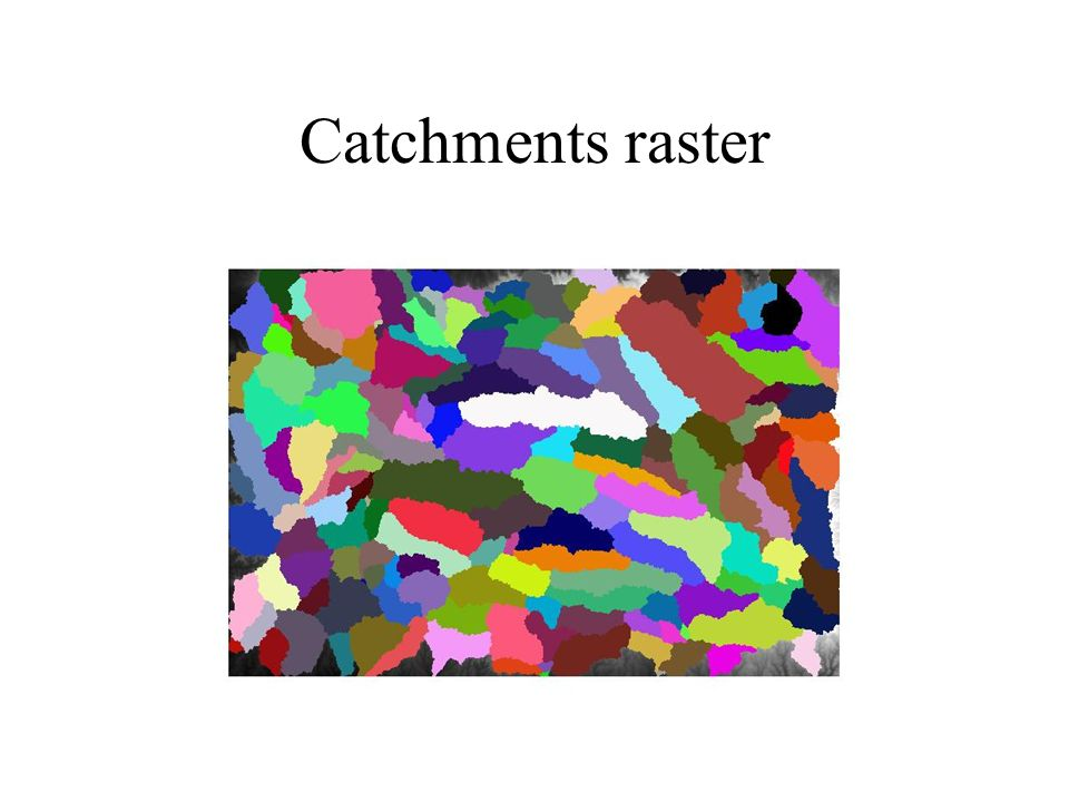 Catchments raster