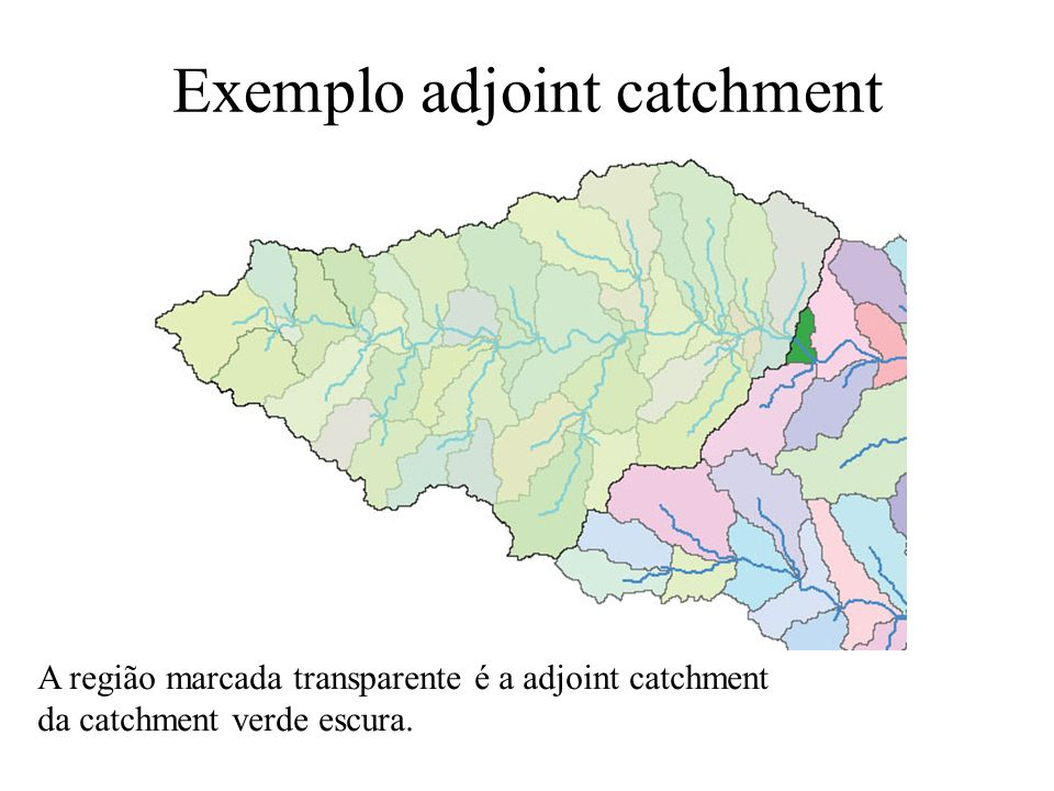 Exemplo adjoint catchment