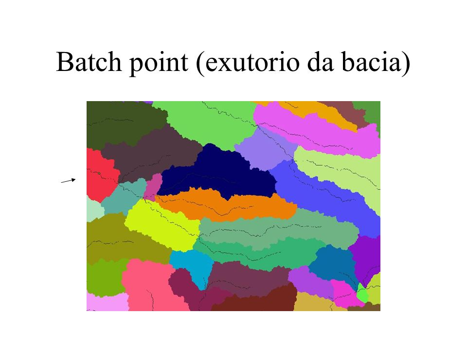 Batch point (exutorio da bacia)