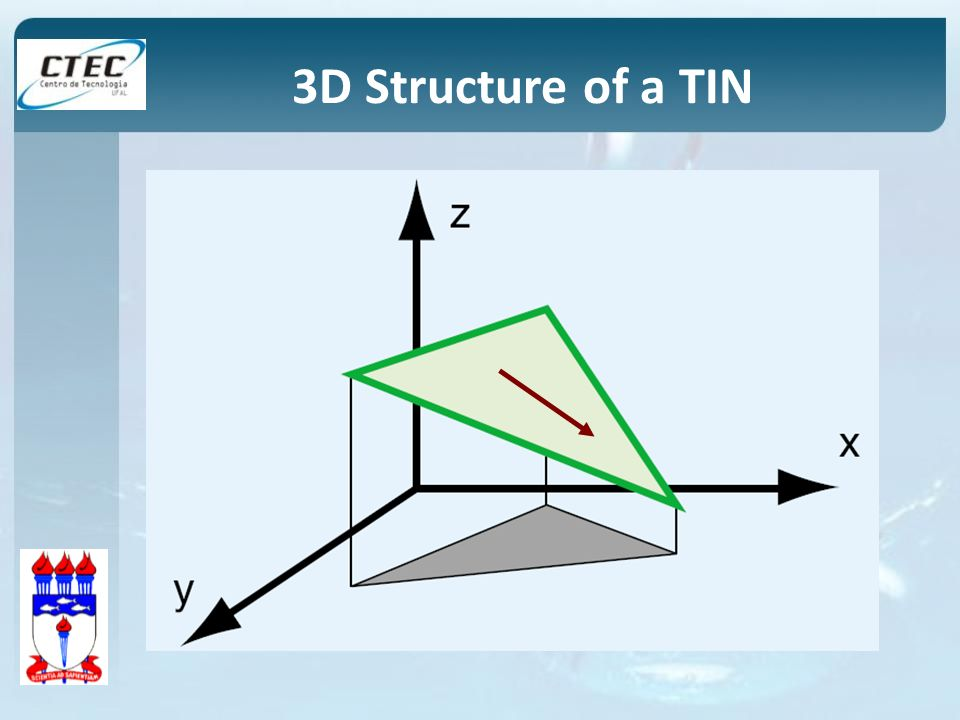 3D Structure of a TIN