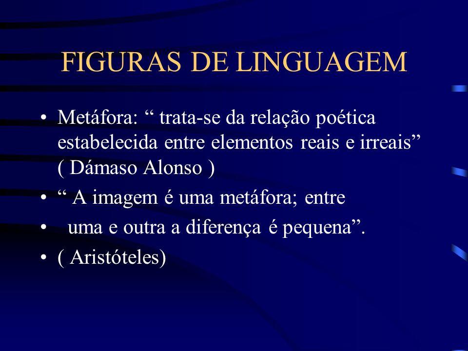 FIGURAS DE LINGUAGEM Metáfora: trata-se da relação poética estabelecida entre elementos reais e irreais ( Dámaso Alonso )