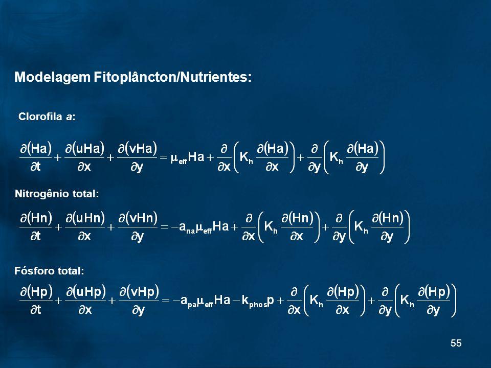 Modelagem Fitoplâncton/Nutrientes:
