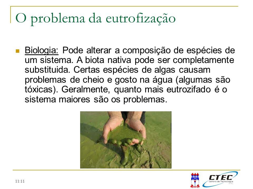 O problema da eutrofização