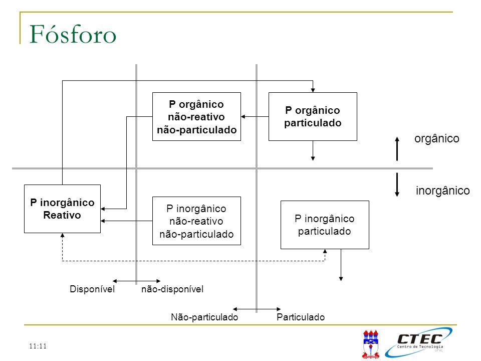 Fósforo orgânico inorgânico P orgânico P orgânico não-reativo