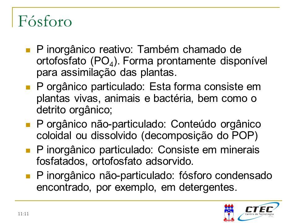 Fósforo P inorgânico reativo: Também chamado de ortofosfato (PO4). Forma prontamente disponível para assimilação das plantas.