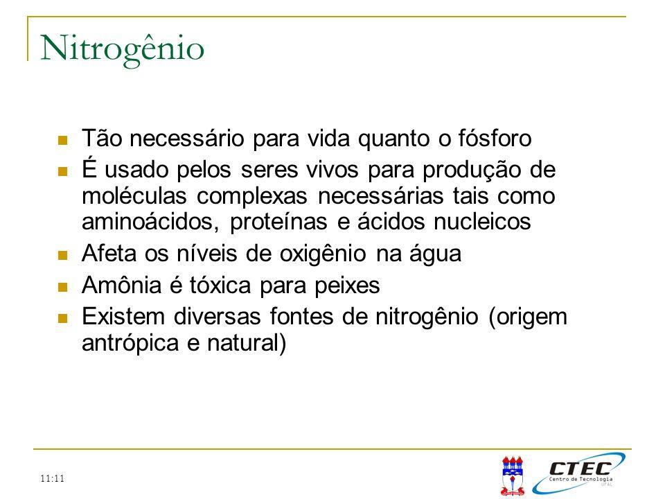 Nitrogênio Tão necessário para vida quanto o fósforo