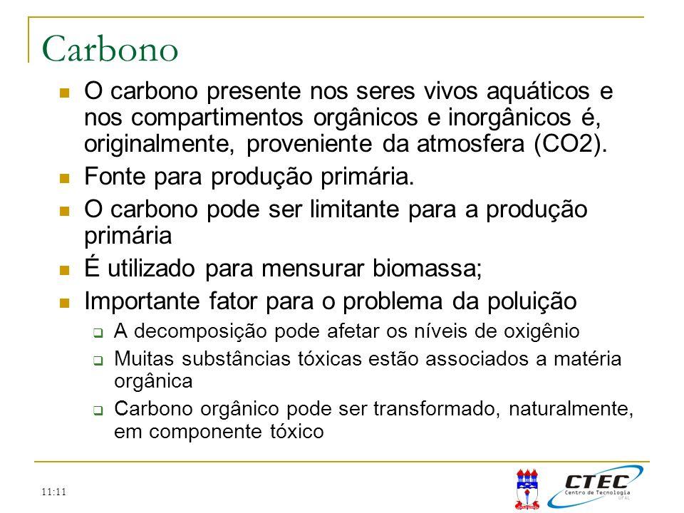Carbono O carbono presente nos seres vivos aquáticos e nos compartimentos orgânicos e inorgânicos é, originalmente, proveniente da atmosfera (CO2).