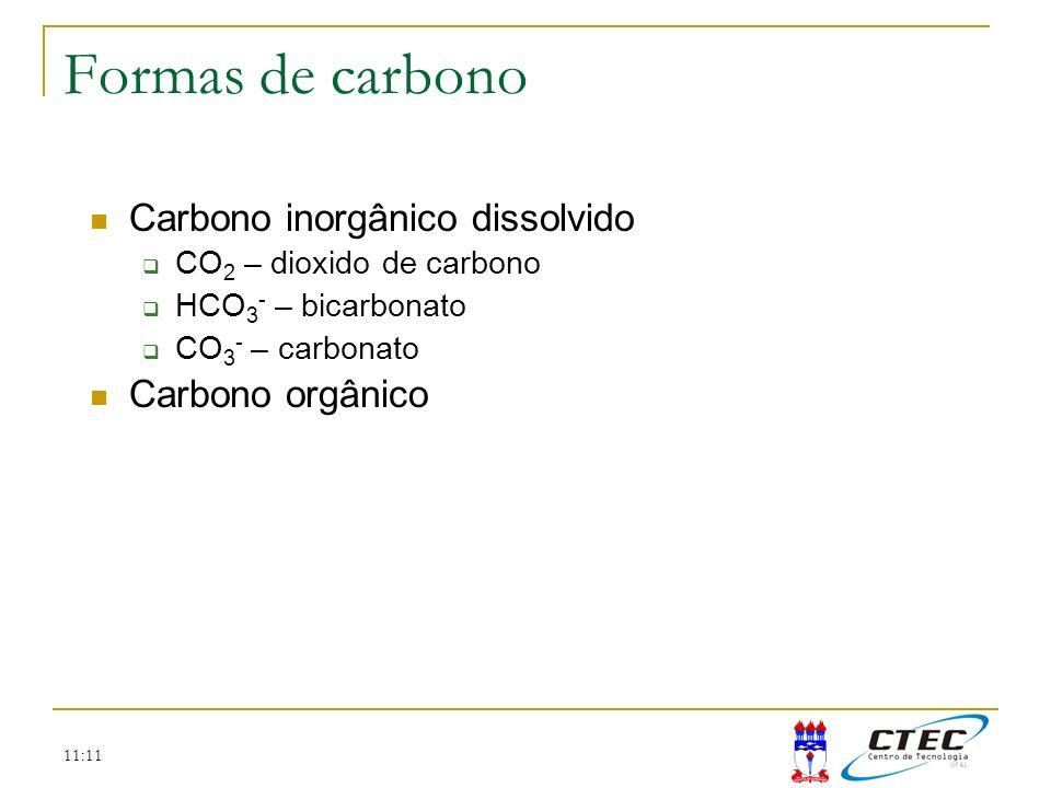 Formas de carbono Carbono inorgânico dissolvido Carbono orgânico