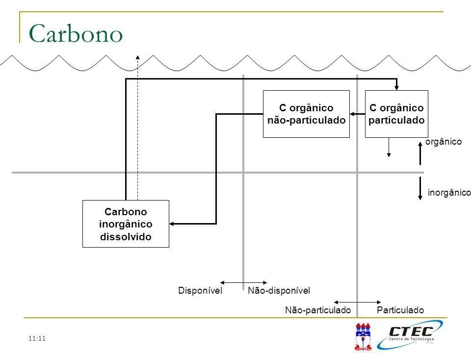 Carbono C orgânico não-particulado C orgânico particulado Carbono