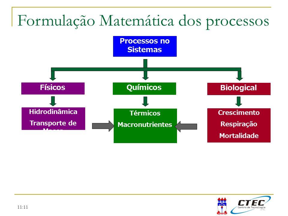 Formulação Matemática dos processos