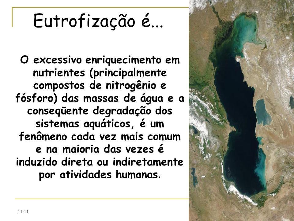 Eutrofização é...