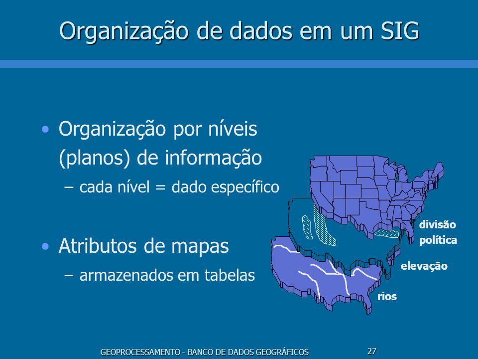 Organização de dados em um SIG