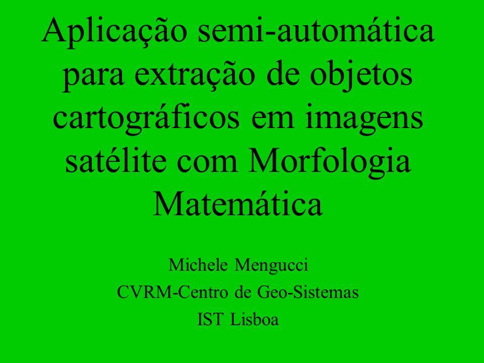 Michele Mengucci CVRM-Centro de Geo-Sistemas IST Lisboa