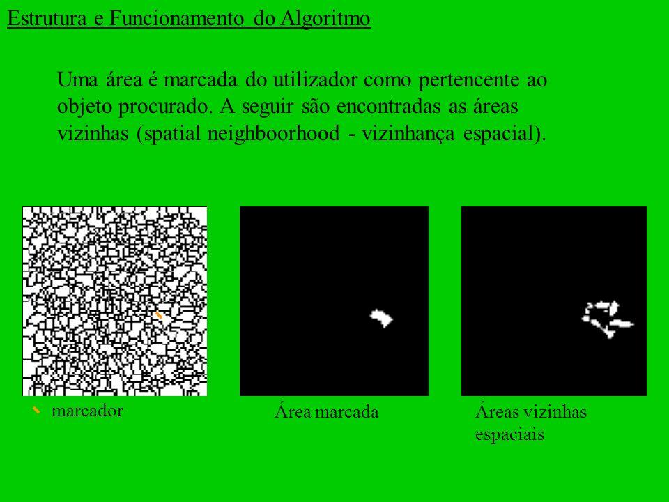 Estrutura e Funcionamento do Algoritmo