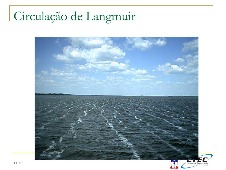 Circulação de Langmuir