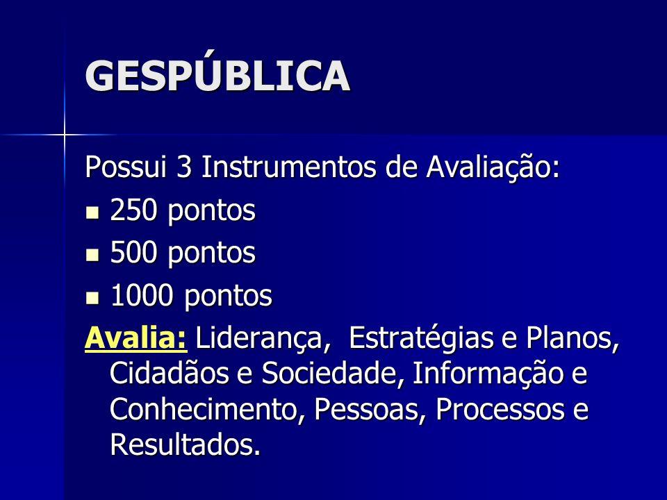 GESPÚBLICA Possui 3 Instrumentos de Avaliação: 250 pontos 500 pontos