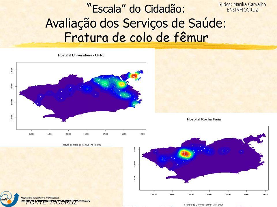 Slides: Marília Carvalho