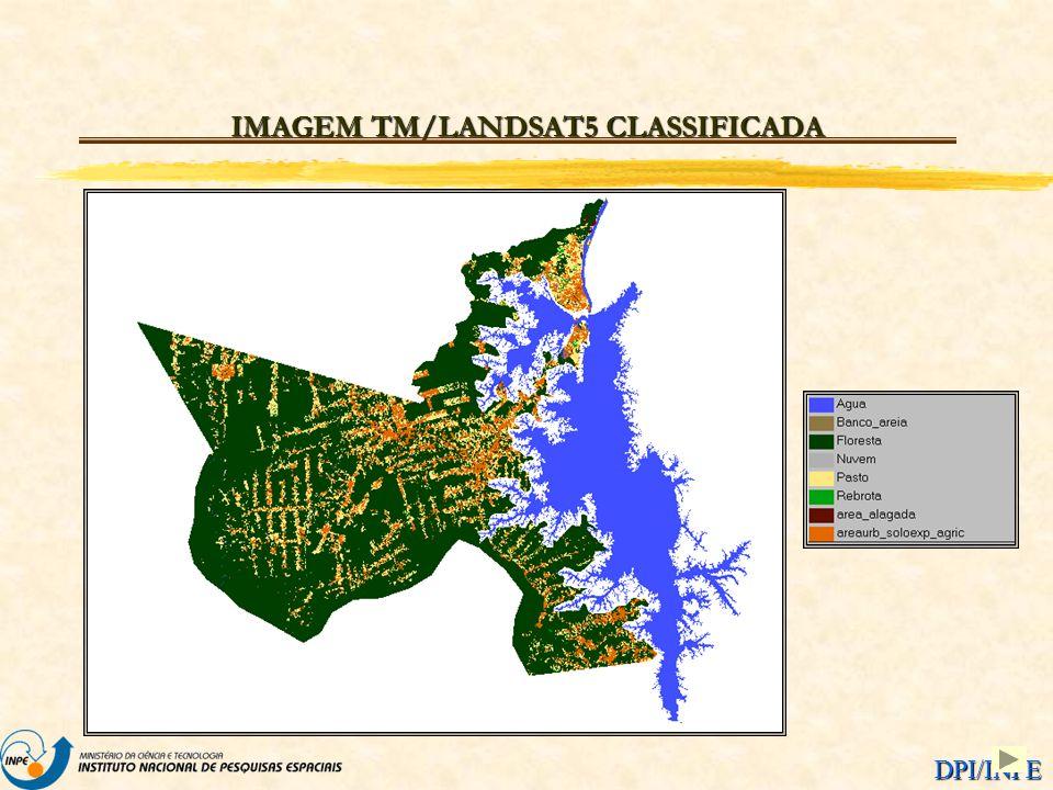 IMAGEM TM/LANDSAT5 CLASSIFICADA