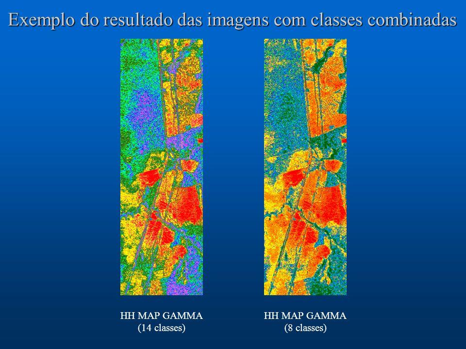 Exemplo do resultado das imagens com classes combinadas