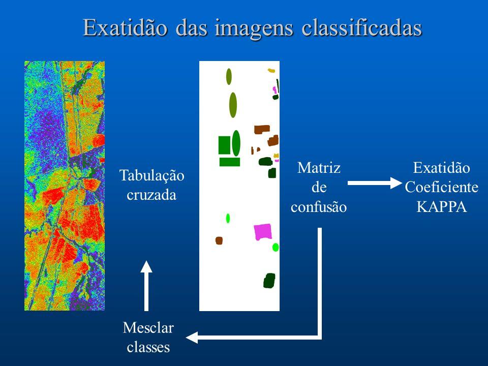 Exatidão das imagens classificadas