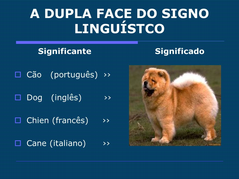 A DUPLA FACE DO SIGNO LINGUÍSTCO