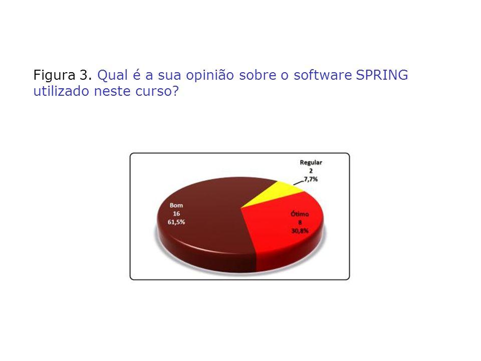 Figura 3. Qual é a sua opinião sobre o software SPRING utilizado neste curso