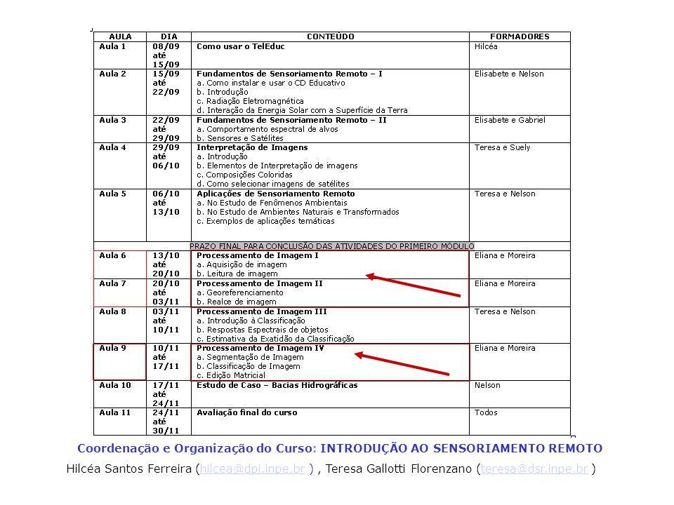 Coordenação e Organização do Curso: INTRODUÇÃO AO SENSORIAMENTO REMOTO