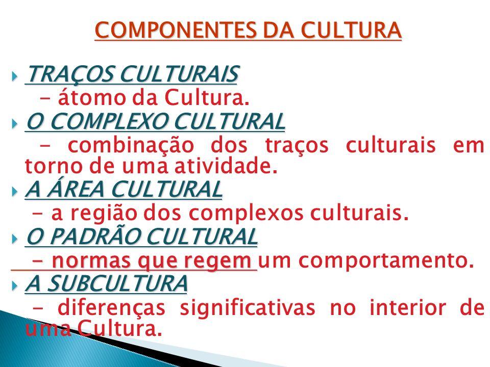 COMPONENTES DA CULTURA