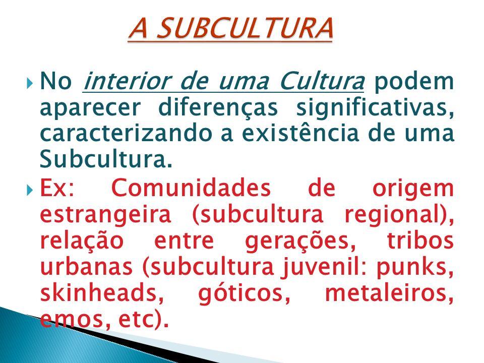 A SUBCULTURA No interior de uma Cultura podem aparecer diferenças significativas, caracterizando a existência de uma Subcultura.