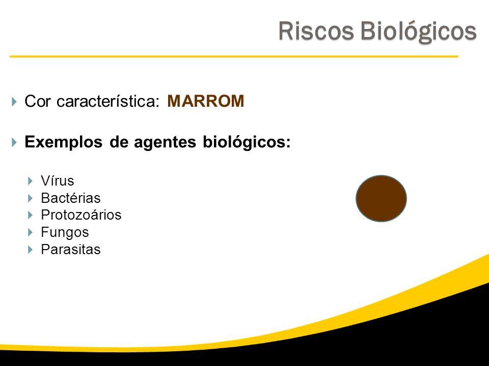 Riscos Biológicos Cor característica: MARROM